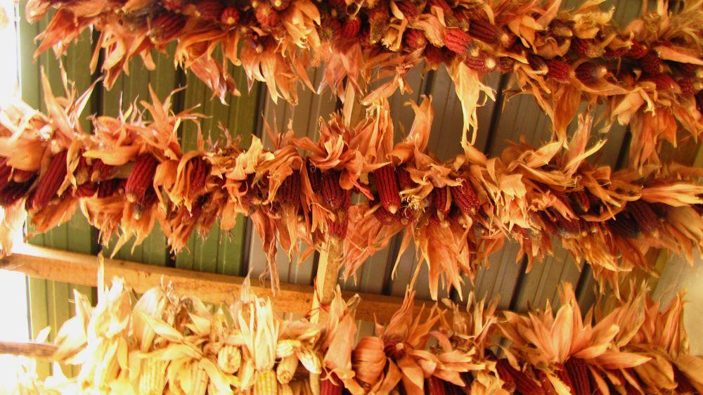 r-enaleni-ugati-gati-drying
