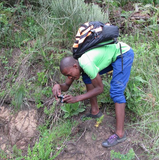 Nkulu getting up close RES.