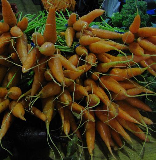 carrots Nkulu
