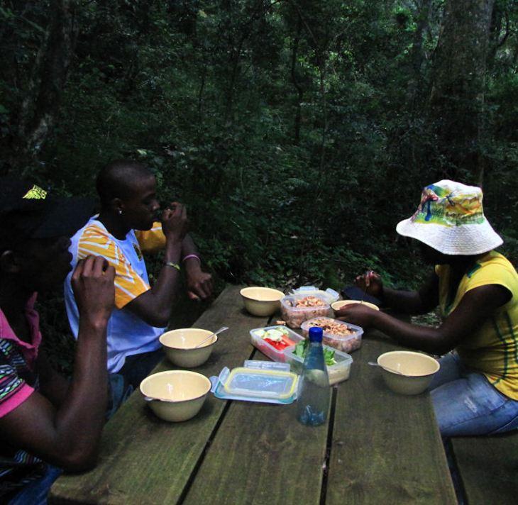 cobham marutswa picnic. res.