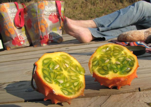 r african horned cucumber birthday 030