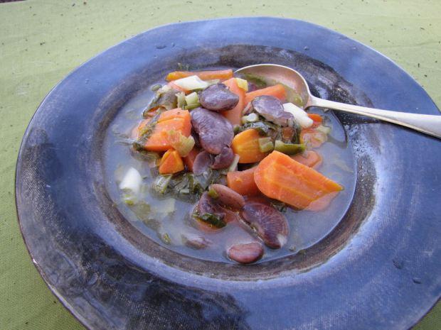 leftover soup res.