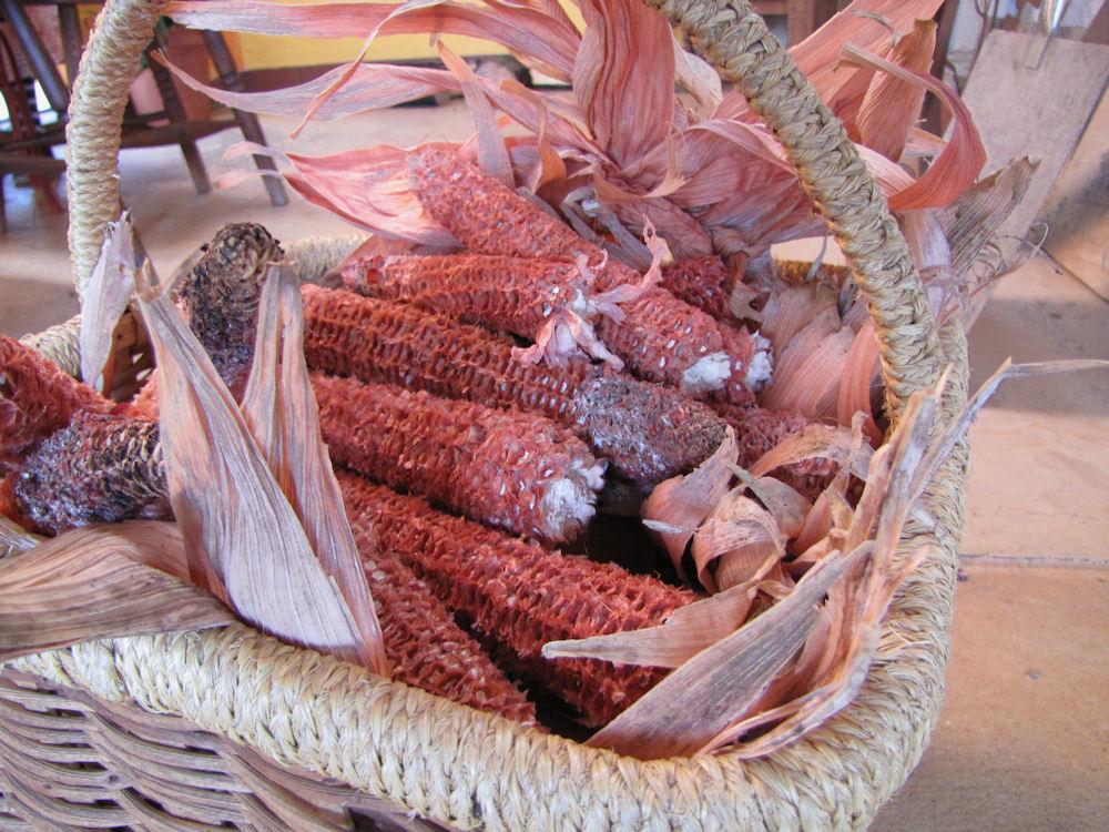 enaleni farm corn cobs