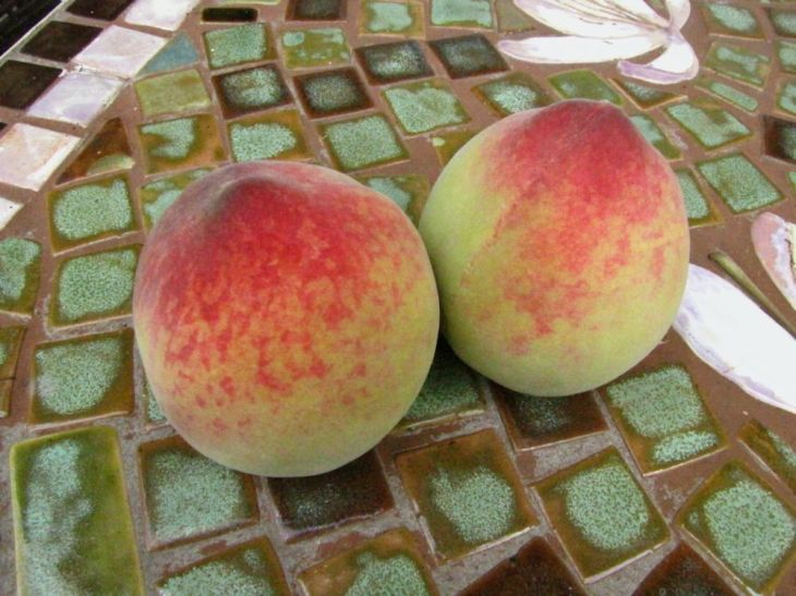 r peaches
