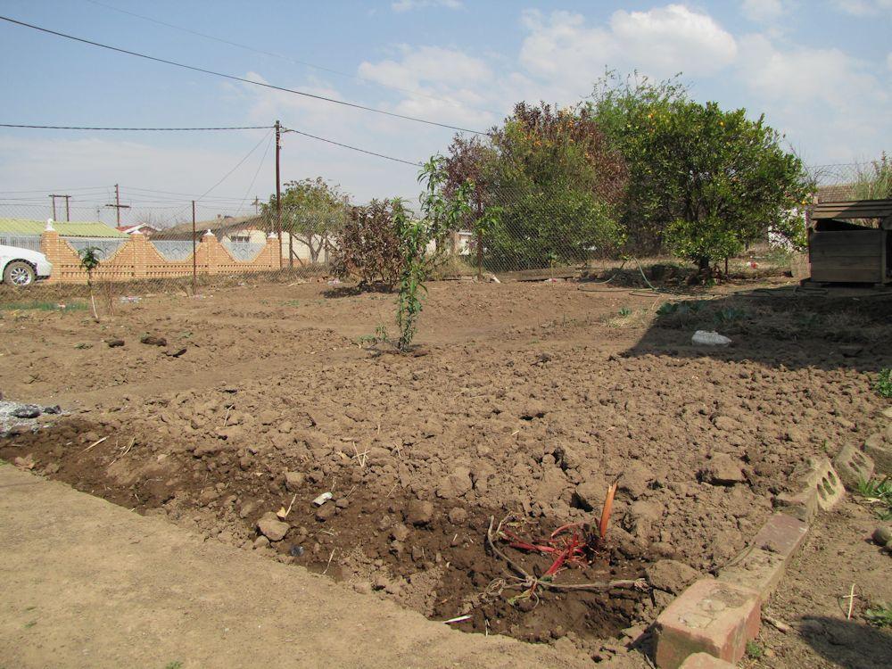 r malinga garden aug 2013 mpop 005