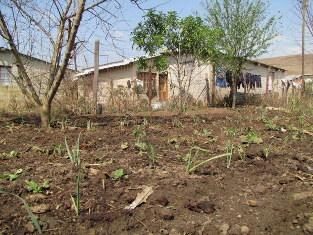 r Mpop enhle new garden Aug 2013