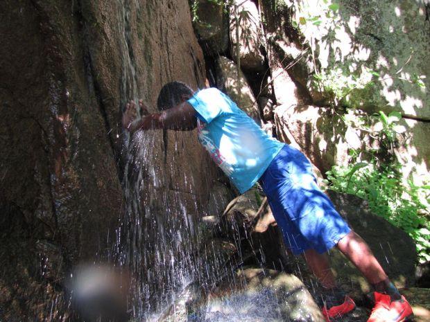 r  Mpop Entle stream forest 313