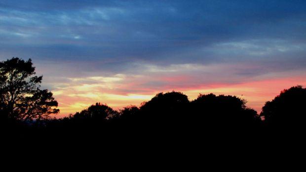 r autumn sunrise forest  003