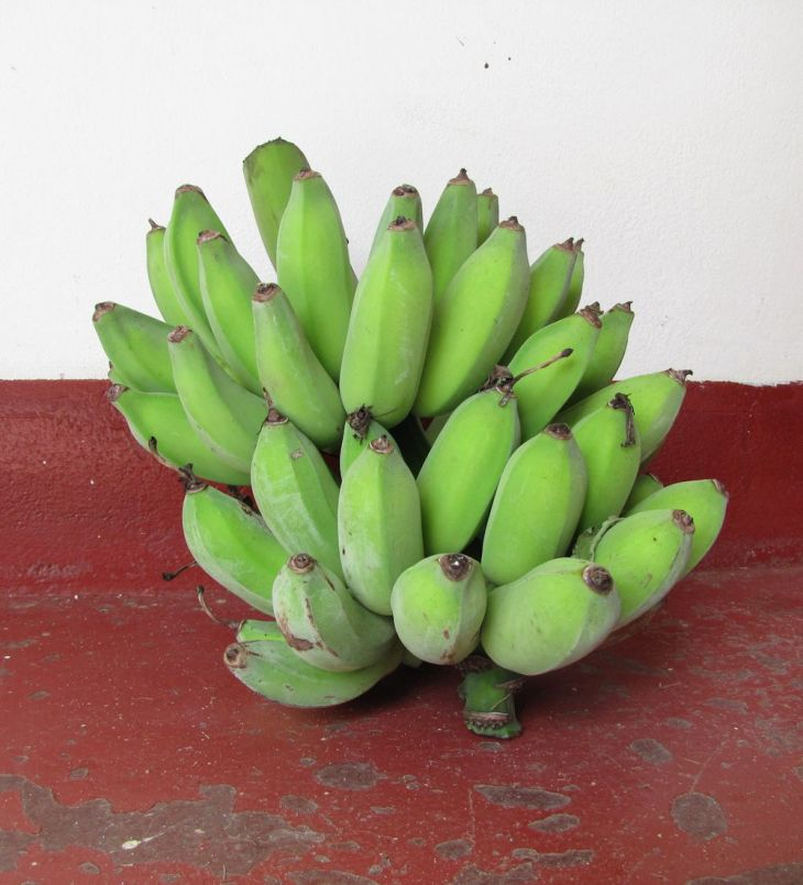 r green bananas