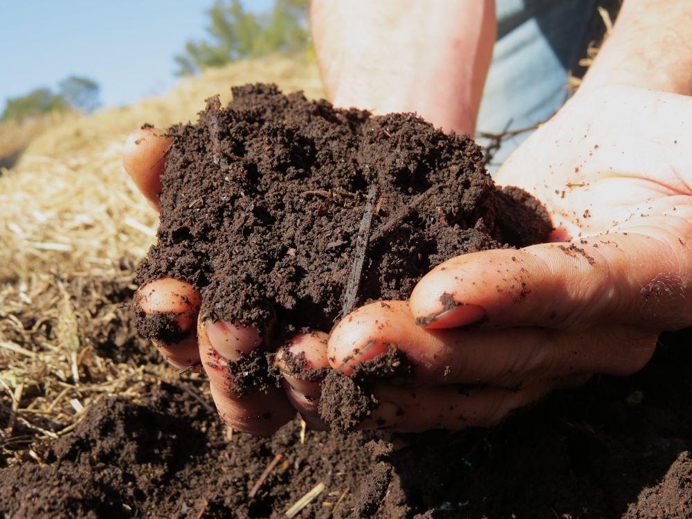 r hands soil