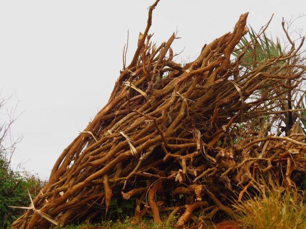 r bundles of wood