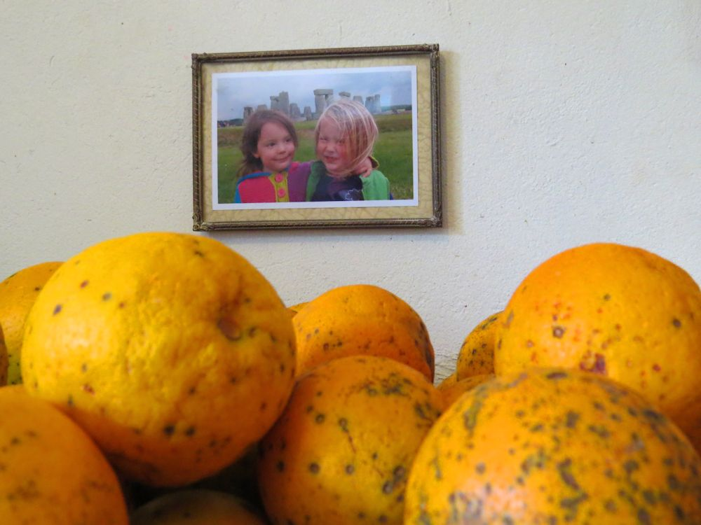r oranges and twins