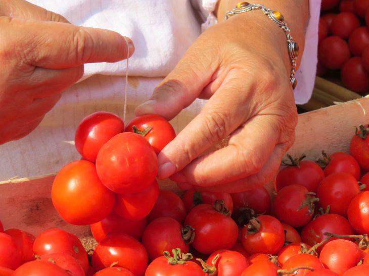 tying-tomatoes