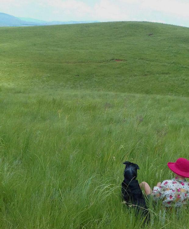 dizzy-nikki-grassland-crop
