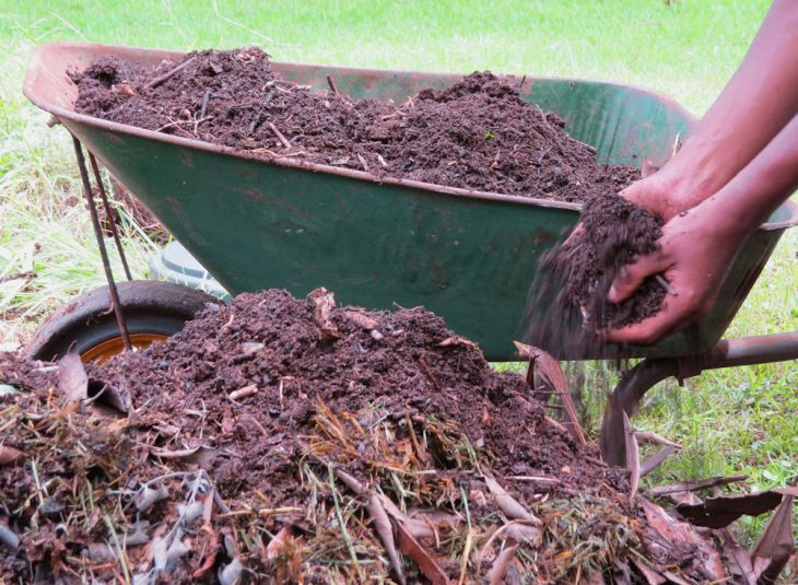 r IMG_5230 adding compost