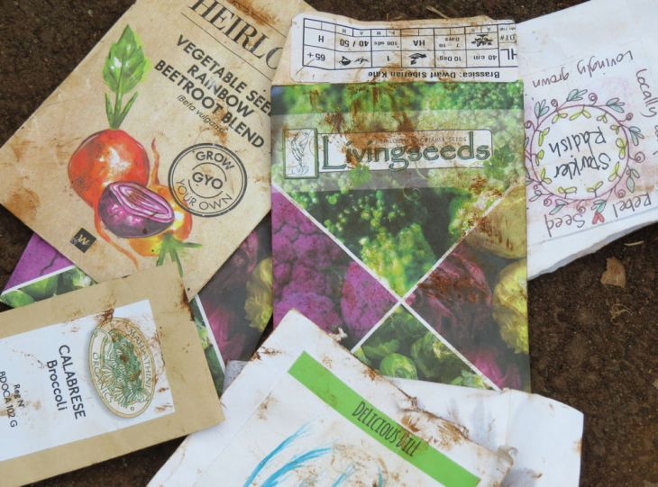 r IMG_5248 seed packets