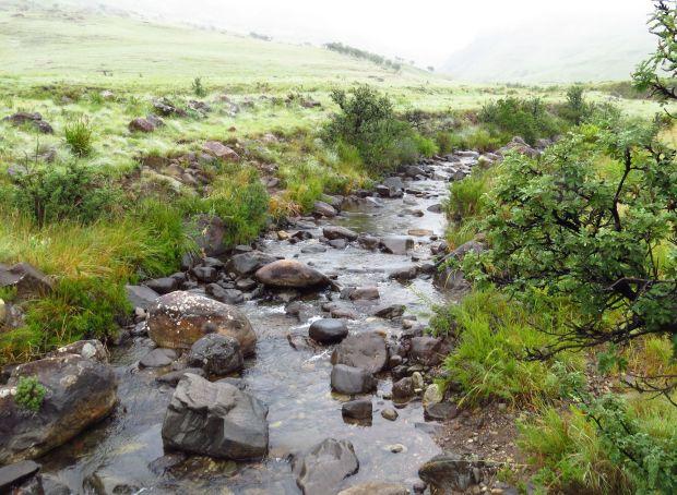 r-river