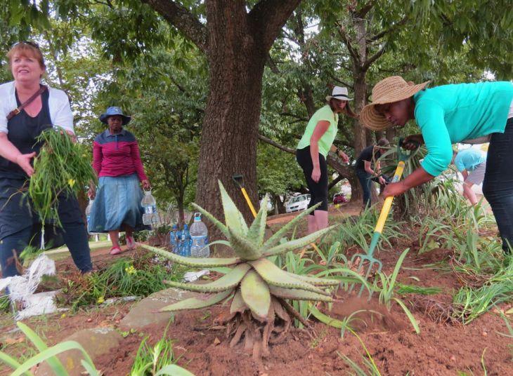 r guerrilla gardeners on main street
