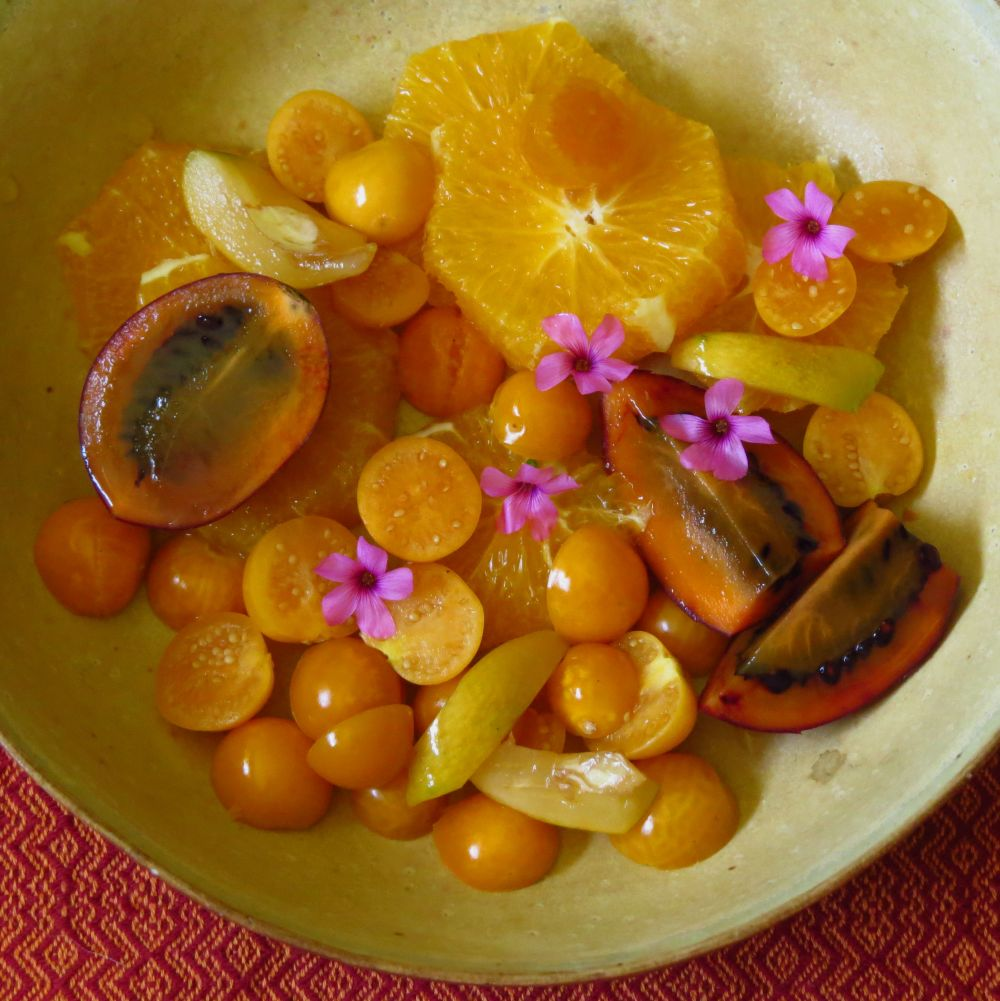 gooseberries tree tomatoes oxalis flowers oranges