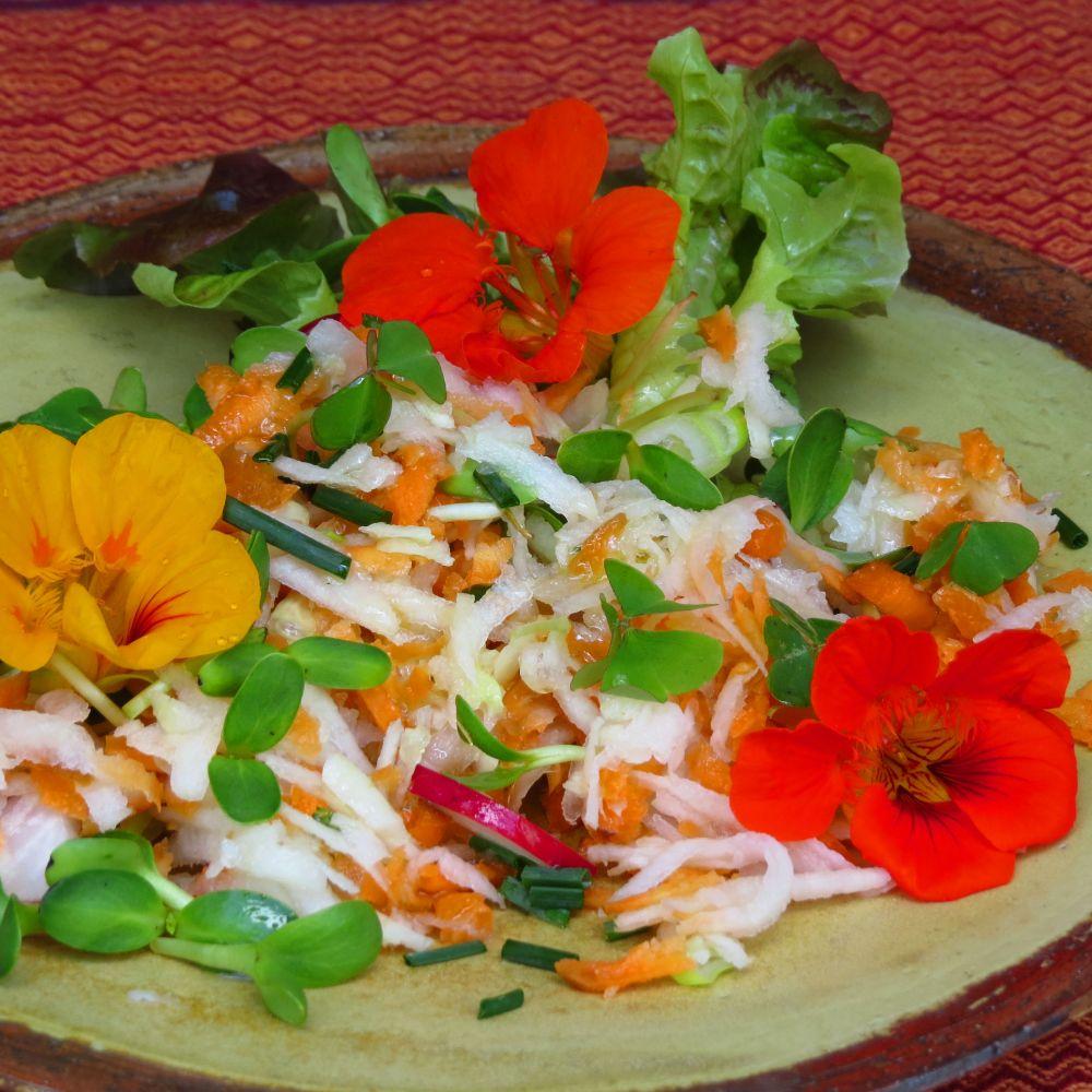 kohlrabi, carrot, celery, radish, sunflower sprout, nasturtium salad