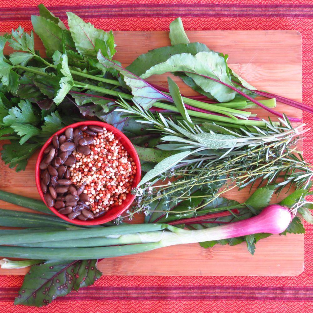 sq sorghum and ingredients